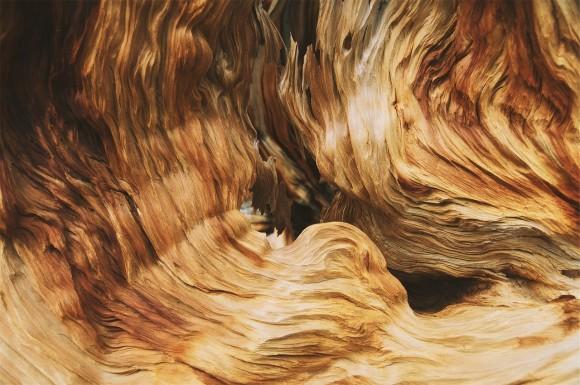 wood-691545_1280