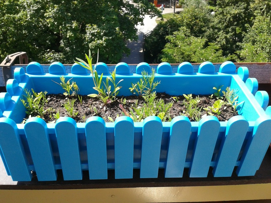 Small gardens, big ideas | Flower boxes