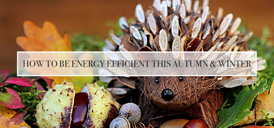 How to be energy efficient - Wooden Blinds Direct copy